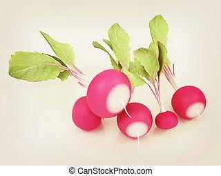 Small garden radish. 3D illustration. Vintage style.