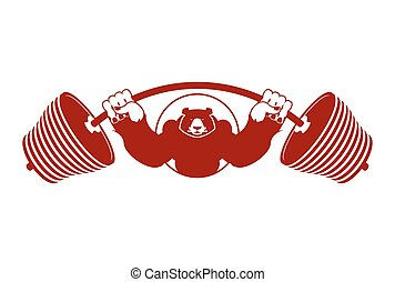 Strong Bear and barbell. Aggressive Grizzly great athlete....
