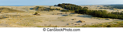 Curonian Spit - Dunes on the Curonian Spit