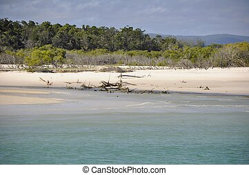 Moon Point Fraser Island - Fraser Island coastline near Moon...