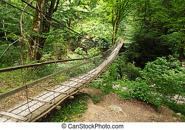 Wooden suspension bridge in wood