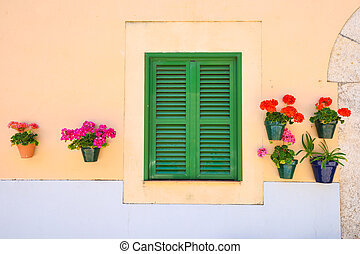 Green window shutters with a wall with flowers - Green...