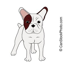 french bulldog icon - flat design french bulldog icon vector...