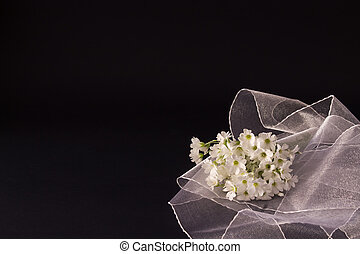 bunch of small white flowers with a veil on a black background
