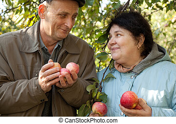 Old man and old woman hold apples and look against each...