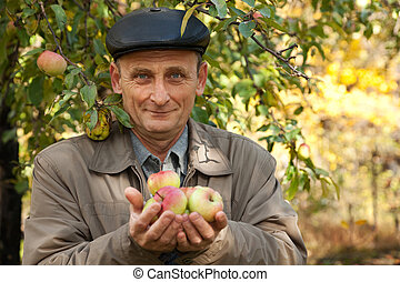Middleaged man with apples stand near apple-tree