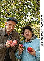 Middleaged man and woman stand under tree, hold apples and...