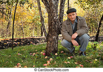 Thoughtful middleaged man sit under apple-tree in autumnal...
