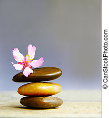 Small pink flower atop three stacked stones