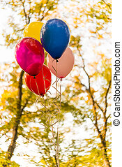 colorful balloons in the autumn park
