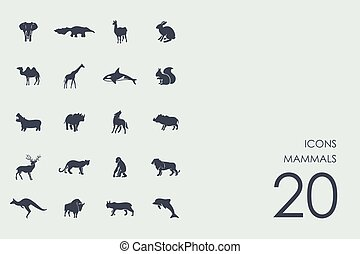 Set of mammals icons - mammals vector set of modern simple...