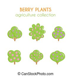 Vector berry bush illustration. Blavkberry plant. Currant...