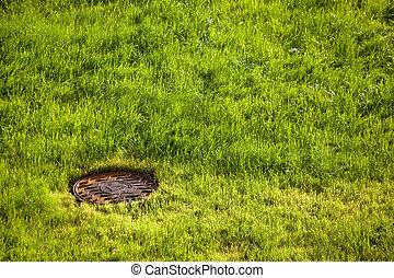 water drain metal rusty hatch on green grass field. water...