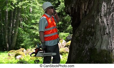 Lumberjack with chainsaw talking on smarth phone near the...