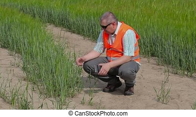 Stressful farmer at cereals field