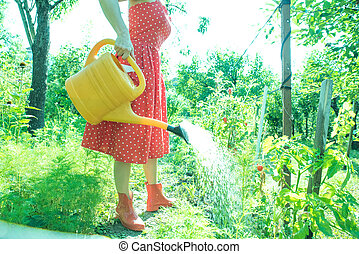 Woman watering the plants - A beautiful young woman in a...