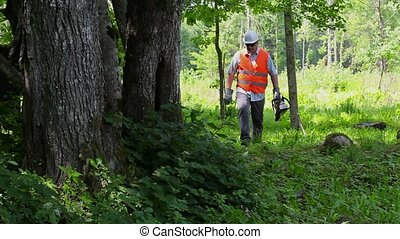 Lumberjack walking with chainsaw near tree