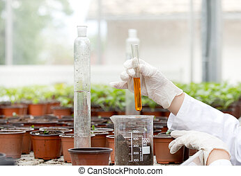 Biologist with test tube in greenhouse - Biologist in white...