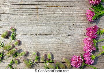 decorativo, ikebana, con, flores, de, trébol, en, el,...