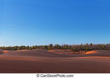Red sand dunes in Mui Ne village, Vietnam - Red sand dunes...