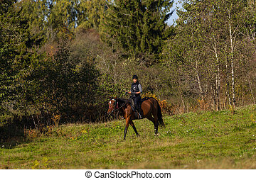 Elegant attractive woman riding a horse on an autumn field