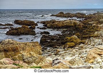 Asilomar State Marine Reserve - Pacific Ocean Asilomar State...