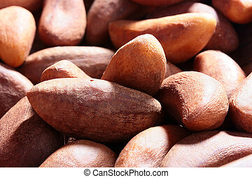Brazil nut - One of versions of nuts - Brazil nut, is used...
