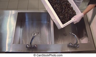 Man in uniform, gloves put raw mussels in sink from white...