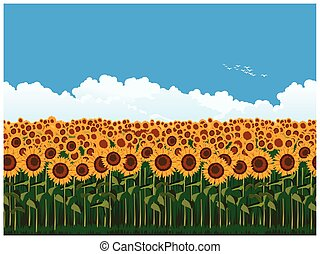 Picturesque field of sunflowers - Seamless horizontal vector...