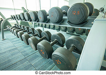 Different sizes and weights dumbbells on stand in fitness...