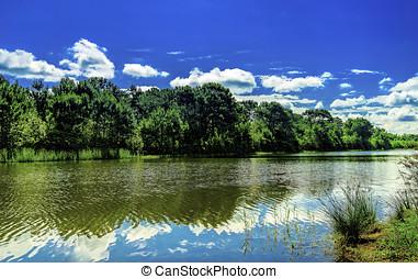 Serene Lake Vista