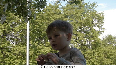 Child with apple tree flower - Little boy near blooming tree...