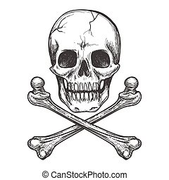 Skull and crossbones vector illustration - Skull and...