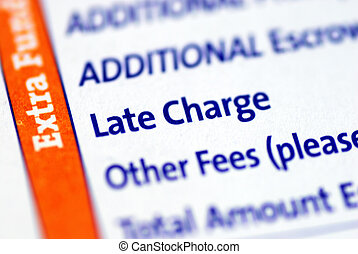 Focus on the Late Charge item
