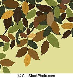 Walnut Tree leaves. Vector