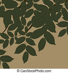 Walnut Tree leaves. Vector