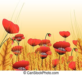 Poppy lawn with wheat