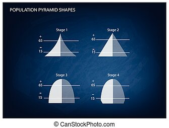 Four Types of Population Pyramids on Chalkboard Background -...