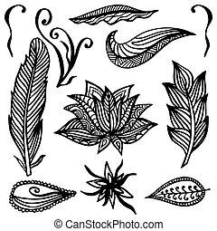 ornamental, estilo, Conjunto, elementos, dibujo,  boho,  vector