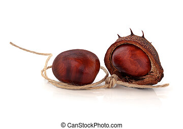 Conkers and String - Conker nuts with husk and a piece of...