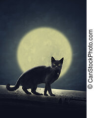 Black cat and full moon - Black cat on the roof and fulll...