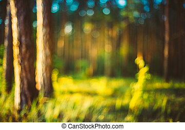 Nature Green Blurred Background Of Out Of Focus Forest Or...