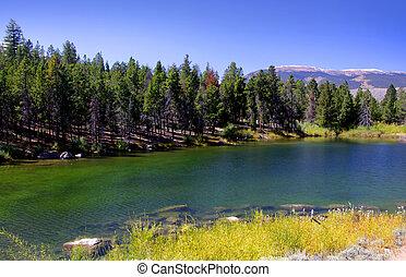 Scenic landscape of Colorado - Scenic autumn landscape in...