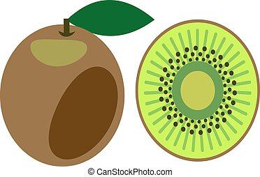 Vector illustration of kiwi