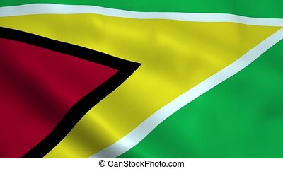 Realistic Guyana flag waving in the wind. Seamless looping.