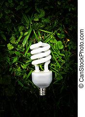 efficient light bulb in green grass