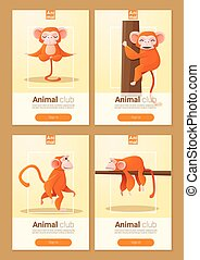 Animal banner with Monkeys for web design 2