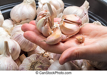 Slices of garlic on a palm
