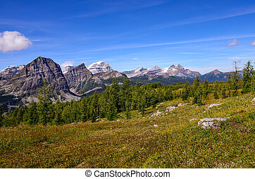 Landscape view of mountains in Banff national park, Alberta, Canada