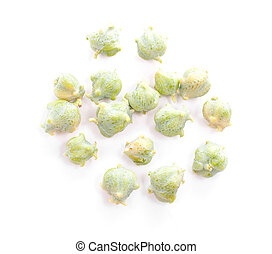 Cypress nuts - Several colorful cypress nuts isolated on...